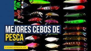 mejores cebos de pesca