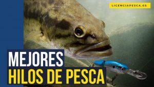 mejores hilos de pesca